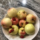 On my hike today: Wild apples and rose hips